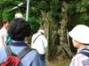 Nakayama5_1