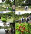 Shibarikyuu20102