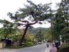 Kyoto_3_11
